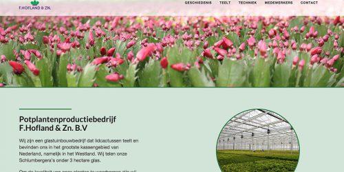 Website F Hofland & Zn
